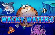 Wacky Waters — автомат на реальные деньги