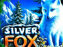 Бесплатный игровой автомат Silver Fox