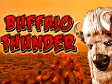 Играть игровой аппарат Buffalo Thunder онлайн на реальные деньги