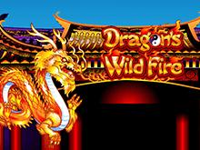Крупные ставки — преимущество игрового автомата Бушующее Пламя Дракона